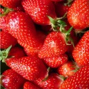 FRAISE LOCALE 250gr
